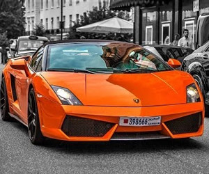 Lamborghini Gallardo: A Tribute