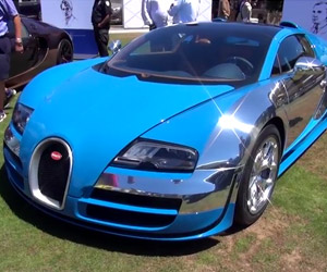 $15 Million Worth of Bugatti Veyrons