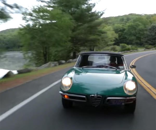 Get Green with Envy of this Alfa Male