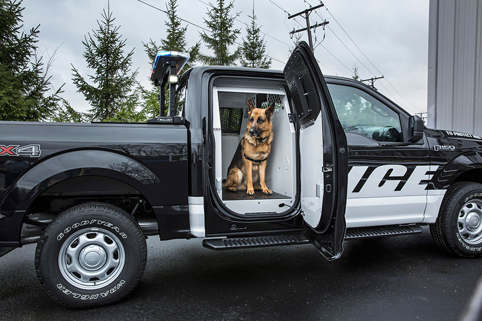 2016 Ford F-150 Special Service Vehicle is a Truck for the PoPo