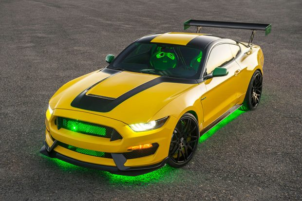 ole-yeller-shelby-gt350_2