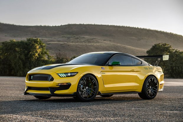 ole-yeller-shelby-gt350_3
