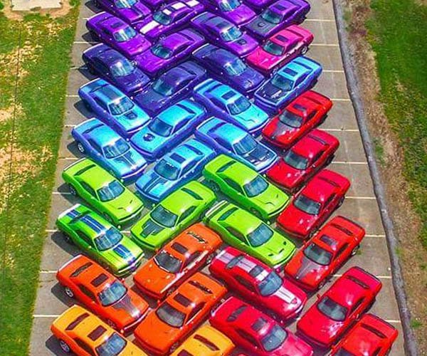 A Rainbow of Dodge Challengers