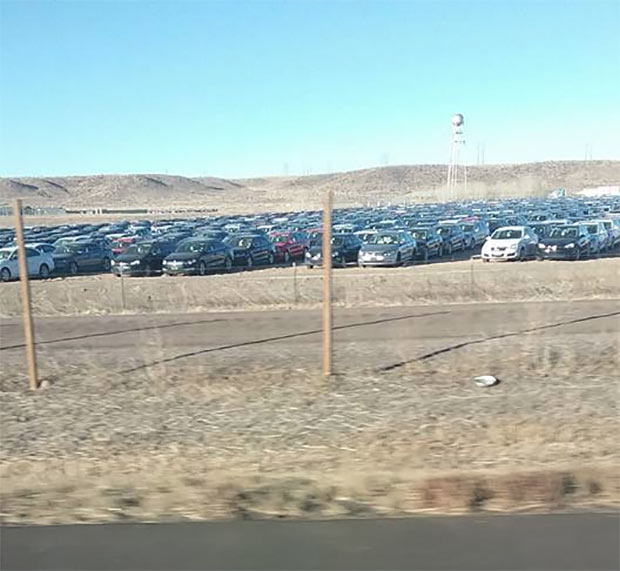 Forlorn VW Diesel Buybacks Sit Sadly In A Colorado Field