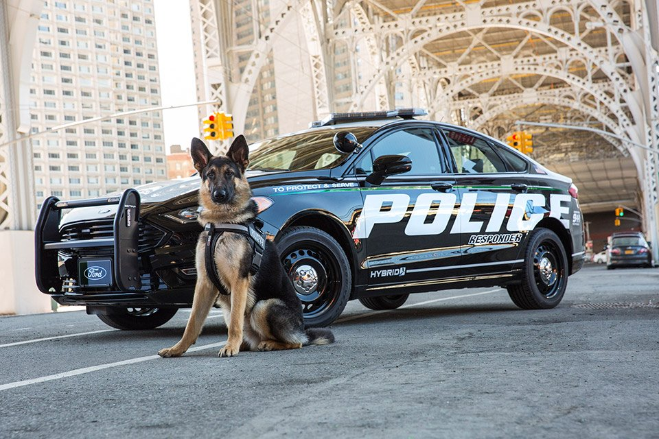 Ford Police Hybrid Responder: Pursuing with Power