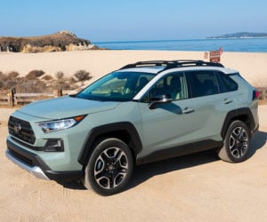 2019 Toyota RAV4 First Drive Review: RAV for All and All for RAV