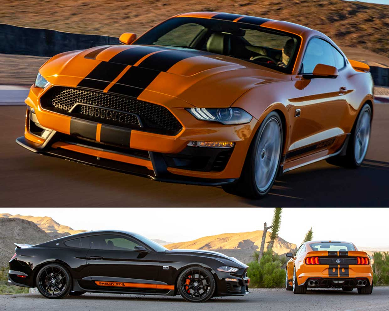 Rental Car Company Has 600hp Shelby Mustangs in Their Fleet