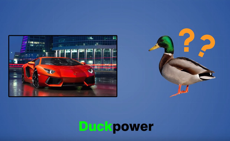 Horsepower… Why Not Duckpower?